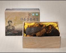 상황버섯(최상품) 1kg